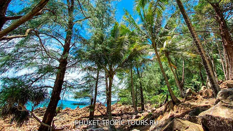 Пляж Банана на Пхукете - фото 16