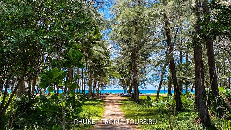 Пляж Бангтао (Пхукет) - фото 3