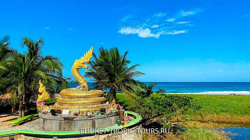 Пляж Карон на Пхукете - фото 4 змей