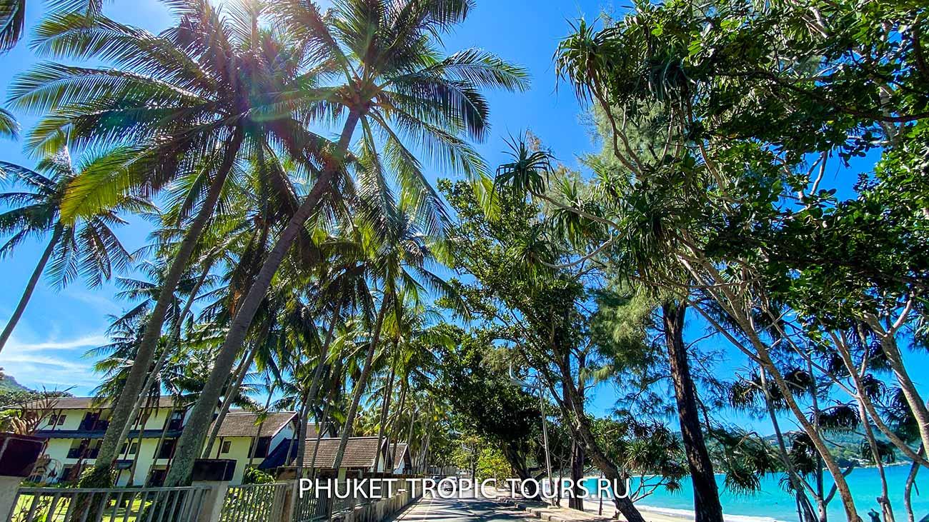 Пляж Ката на Пхукете - фото 1