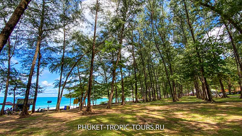 Пляж Най Харн (Пхукет) - фото 7