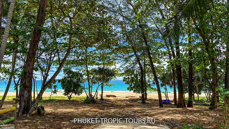 Пляж Найтон на Пхукете - Фото 3