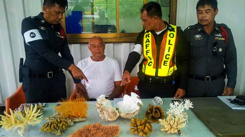 Правила ввоза в Таиланд - фото 4